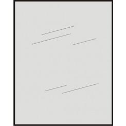 Spiegels 5Mm Rechthoek 60x40